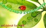 SEO 'evergreen', eternamentejoven