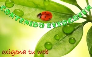 Seo evergreen, la forma de posicionar tu web con contenidos frescos y atemporales